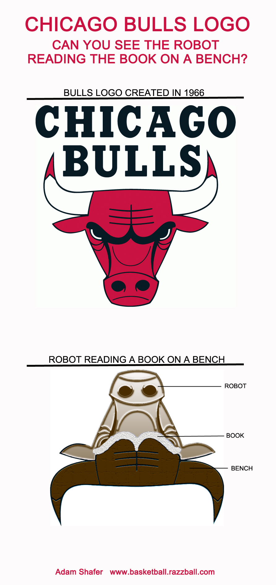 Visualization the robot in the bulls logo